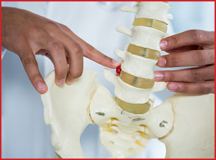 Elevation Physiotherapy & Wellness :: Pelvic Health Physiotherapy 1