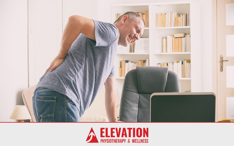 Elevation Physiotherapy & Wellness :: Exercises for Lower Back Pain Are NOT Created Equal!